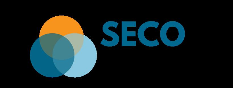 logo seconews